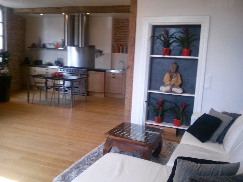 secteur Unesco avec sauna et spa, vacation rental in Lescure-d'Albigeois
