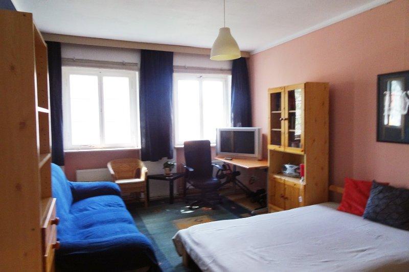 Mooie grote woonkamer / slaapkamer voor maximaal twee personen