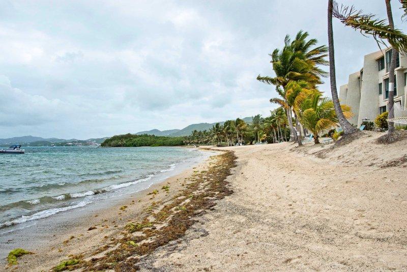 Questa proprietà sarà presto pubblicata su HGTV's Caribbean Life!