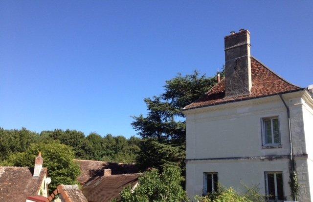 Large, luminous holiday home with garden & forest in village close to chateaux., location de vacances à Écueillé