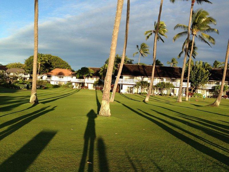 ombres Après-midi sur la grande pelouse Kiahuna