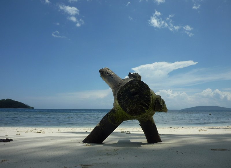 Raja Ampat Diva Homestay, vacation rental in West Papua