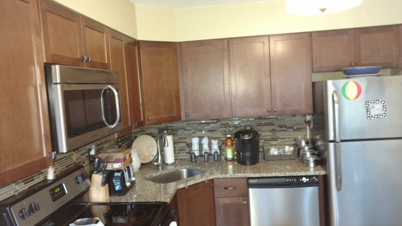 All brand new appliances and high quality cabinets.  Dishes, dishwasher and silverware provided.
