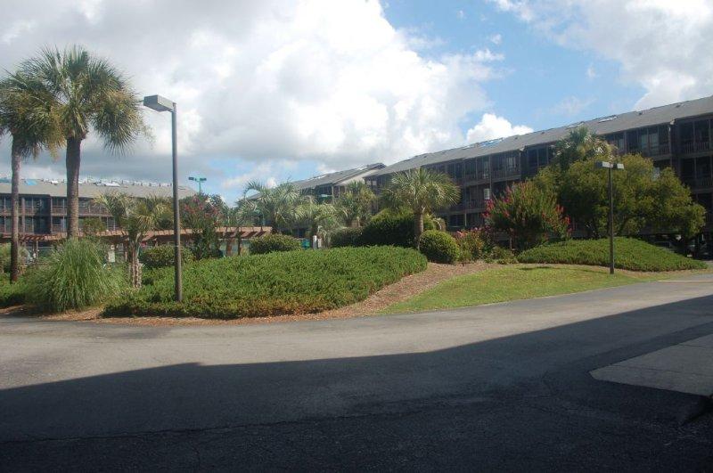 Building,Office Building,Road,Tree,Garden