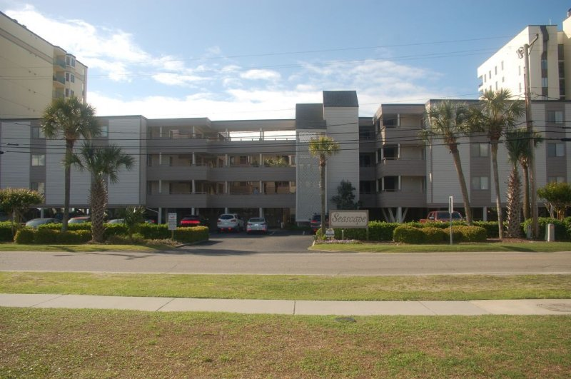 Building,Office Building,High Rise,Palm Tree,Tree