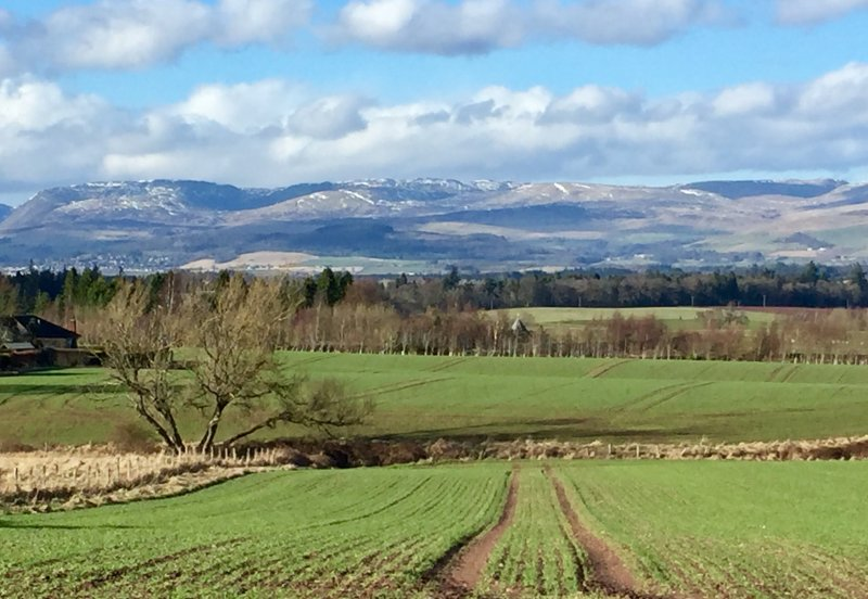 View from local path looking towards Crieff