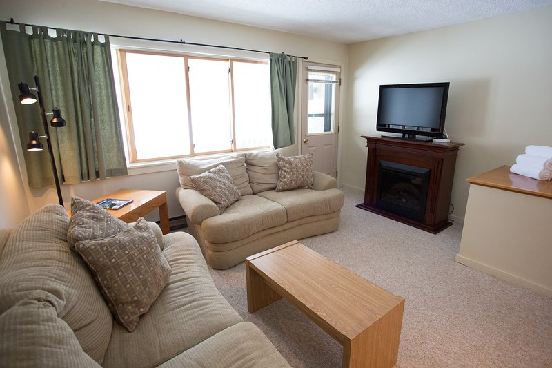 Living Area with Electric Fireplace and Flat Screen TV