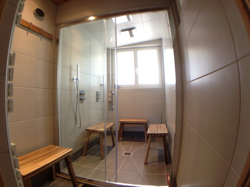 Guest Combined Steam and Shower room.