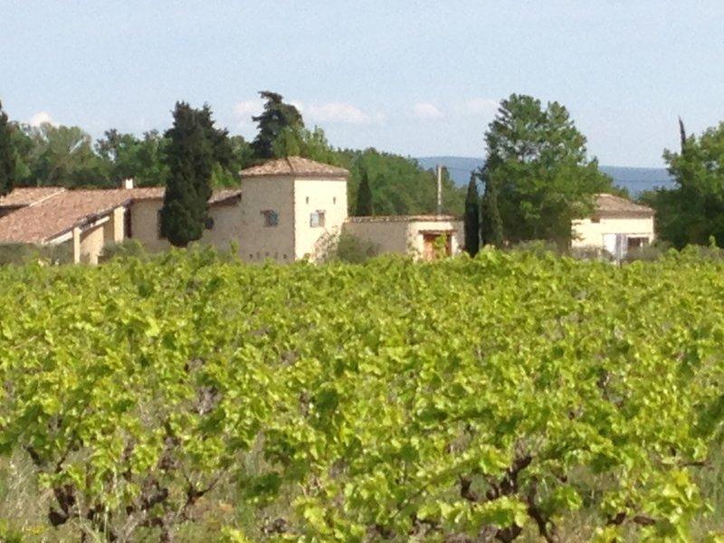 MAS au pied du Mont Ventoux en Provence, vacation rental in Caromb
