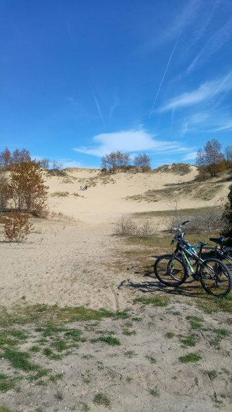 Large dune about 50 meters from the house
