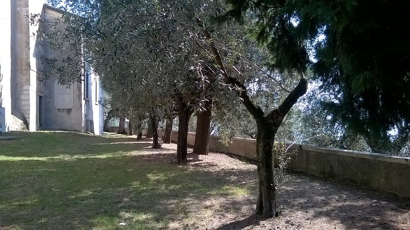 The quiet in the garden of the church Cecina