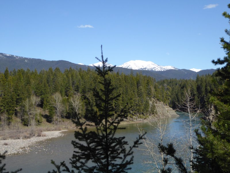 View from your riverfront property of  Wild and Scenic Flathead River Canyon