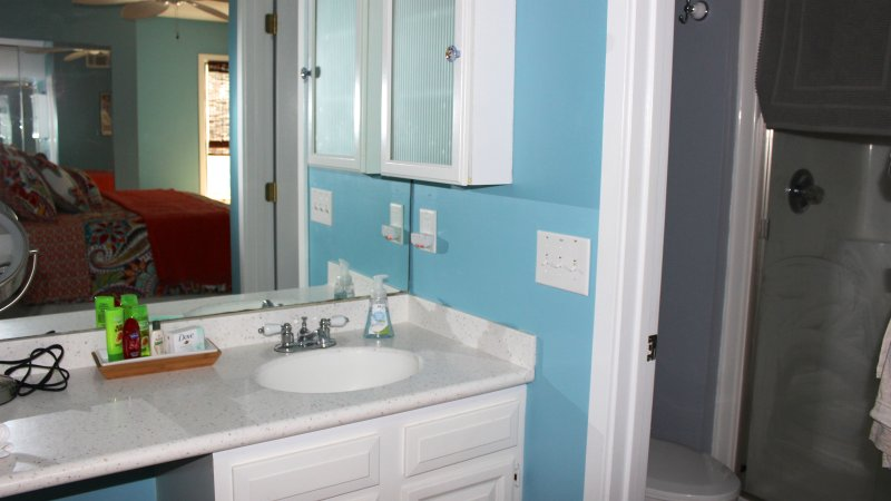 The master bathroom has a sink/vanity area and a lighted magnifying mirror is provided.