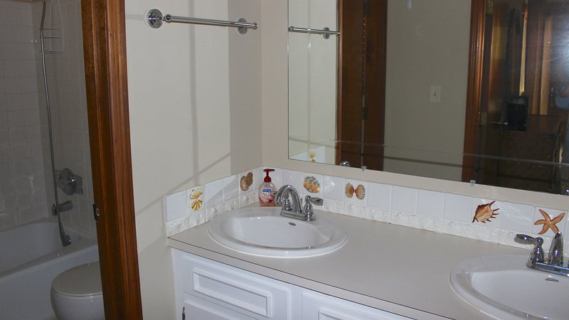 The master bath has a double sink and a shower/tub.