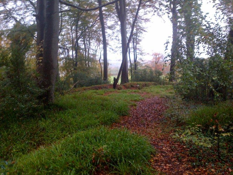 Trail à Ardmore