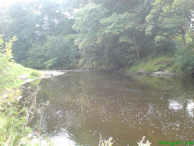 Rivière Faughan- Pullen trou 50 mètres de la maison