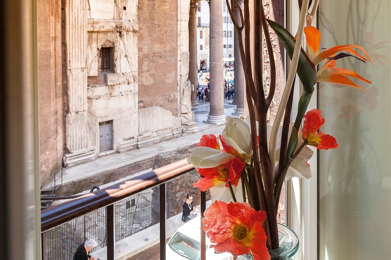the view from my window of the Corinthian capital of Pantheon.You can almost touch the Pantheon.