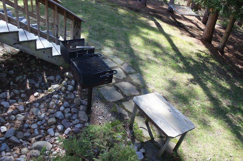 Twee roosters met een bijzettafel om uw voedsel te bereiden op deze zonnige dagen!