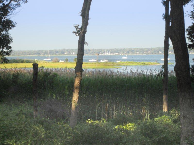 Asociación de Vecinos Parque con vistas a las manos Creek y 3 millas del puerto