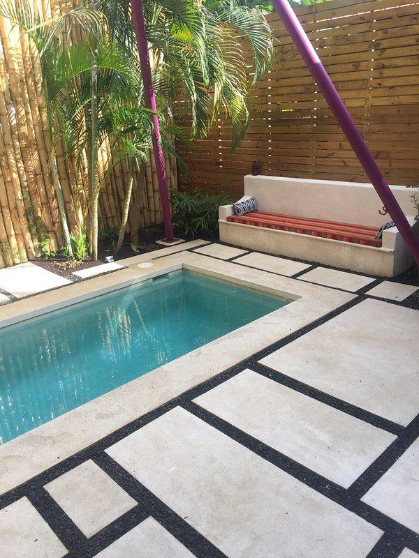nuova piscina Brand - con tanto di amaca, sdraio e lettino in cemento per rilassarsi!