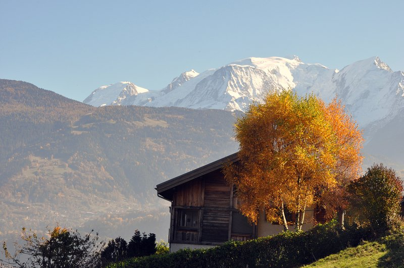 location appart Domancy Chalet du
