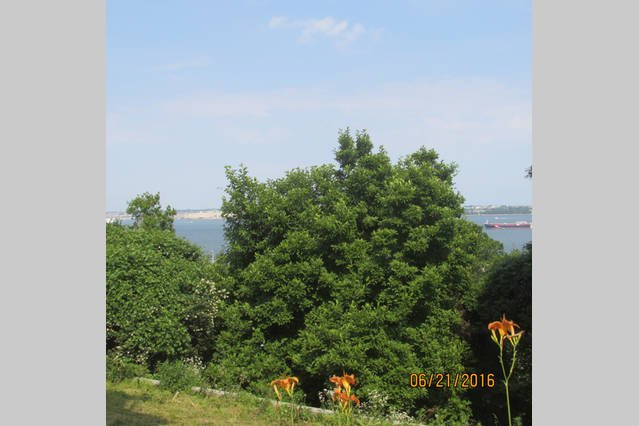 25 Minutes to Manhattan on FREE ferry, alquiler vacacional en Staten Island