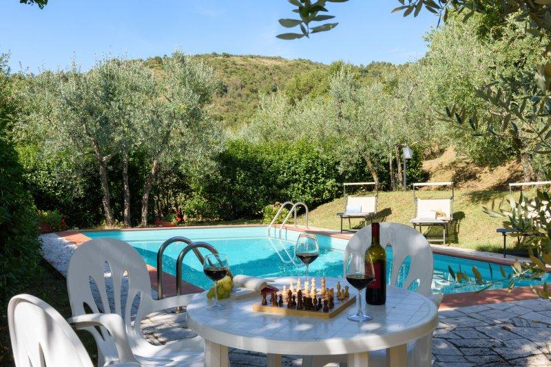 Casa Serena, Private Cottage and Pool - Charming Private Cottage with Private Pool , and Views, holiday rental in Castiglion Fiorentino