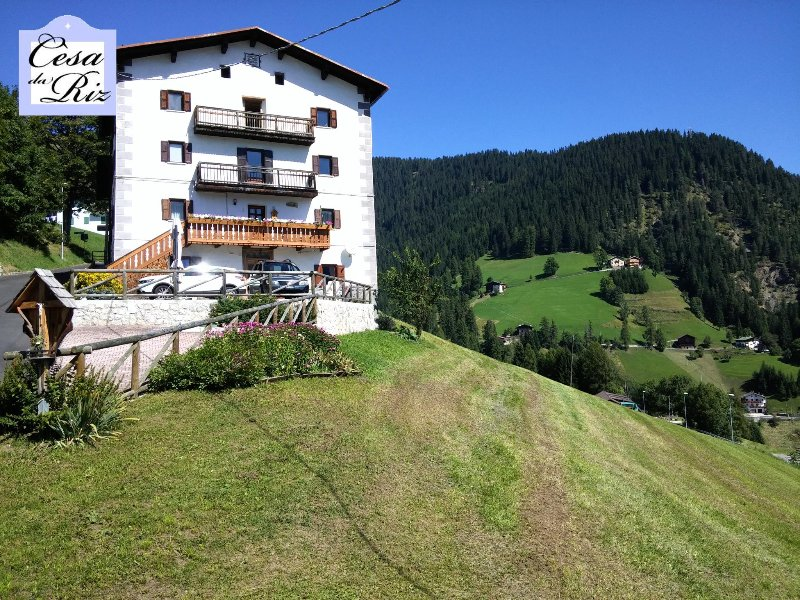 Cesa da Riz - Appartamento Civetta 4+1, holiday rental in Selva di Cadore