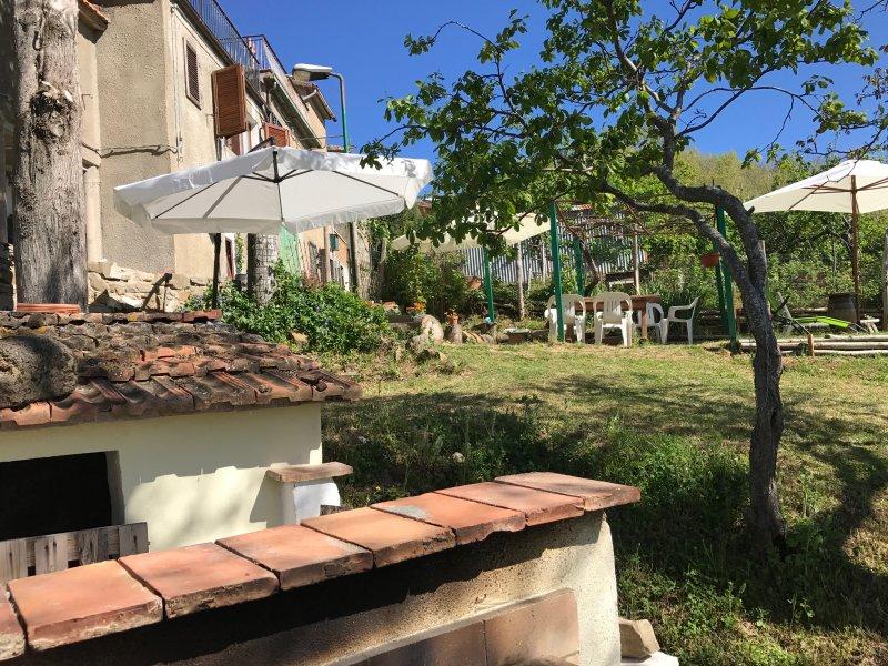 angle view garden