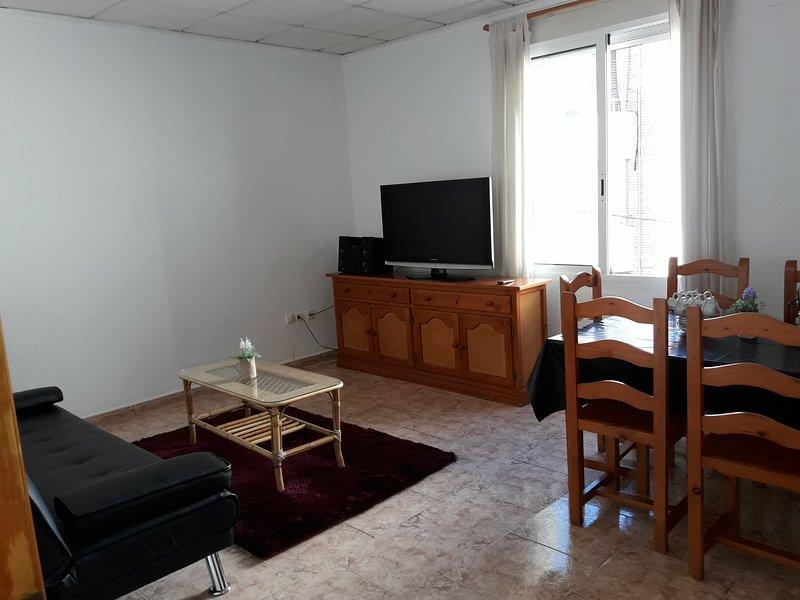 salon avec canapé-lit, télévision à écran plasma, table à manger pour 7 personnes, grande télévision 50 pouces.