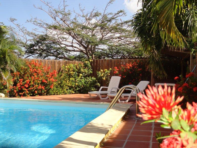 Jardín con piscina.