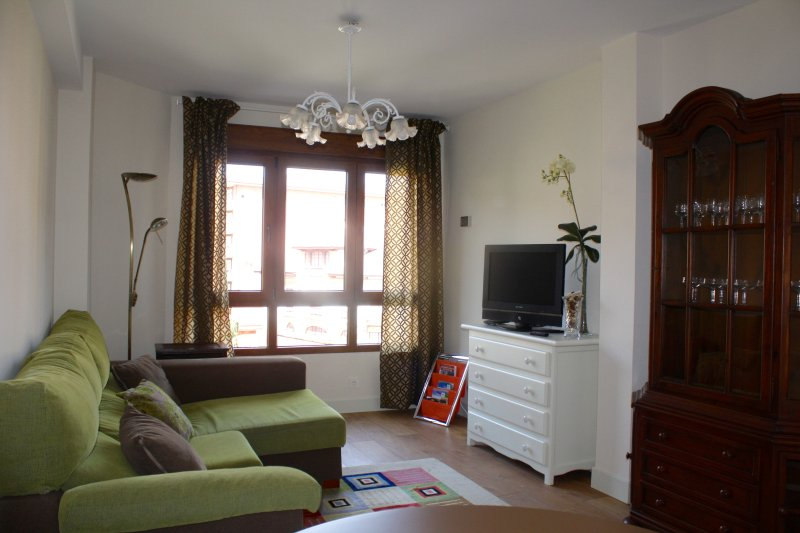 CANGAS CENTRO, holiday rental in Cangas de Onis