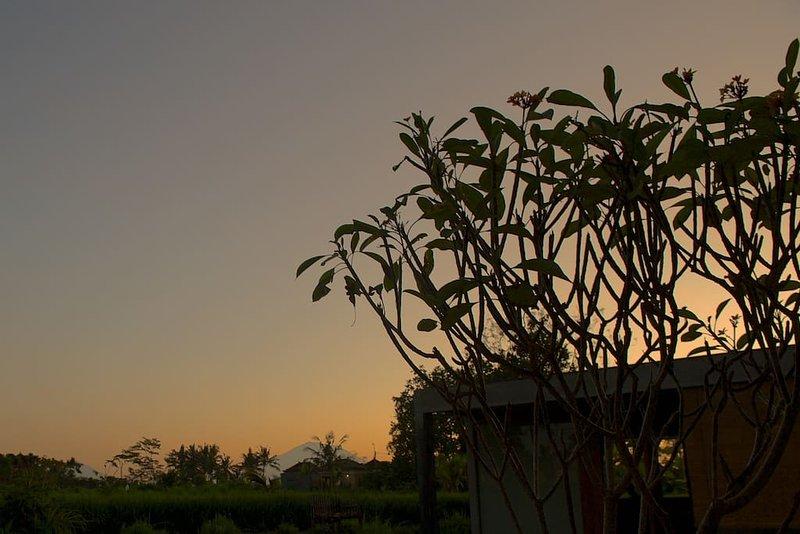 Sunrise ne va pas mieux dans Podpadi.