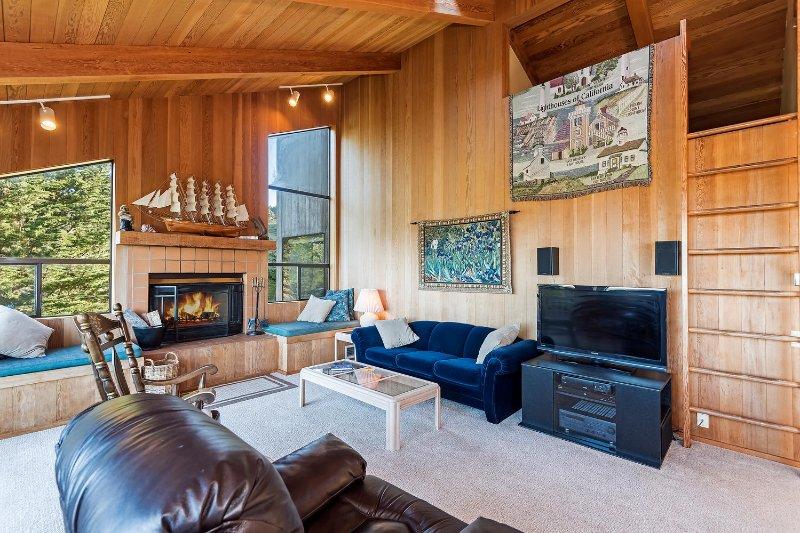 Viglione - Sala de estar com lareira e TV