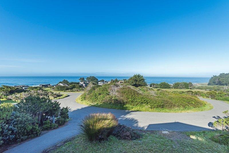Viglione - Pacific Ocean View
