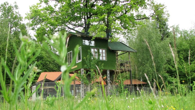 Fairytale tree house RAMONA with beautiful cave, holiday rental in Ljubljana