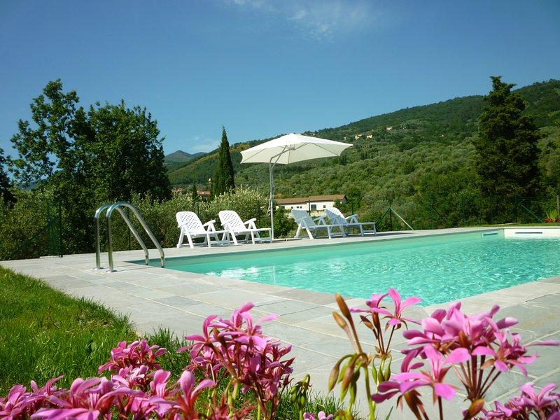 Pool med panoramautsikt / pool med utsikt