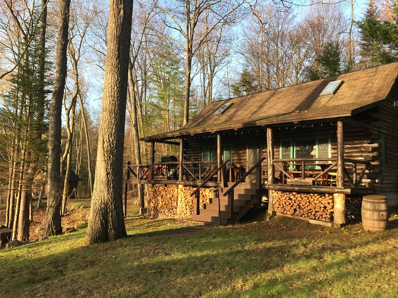 Authentic Log Cabin, Waterfront with Kayaks and Beautiful Views, location de vacances à Lake Pleasant