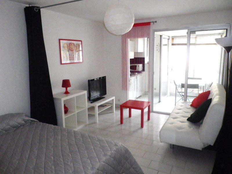 Studio meublé pour 4 personnes, holiday rental in Canet-en-Roussillon