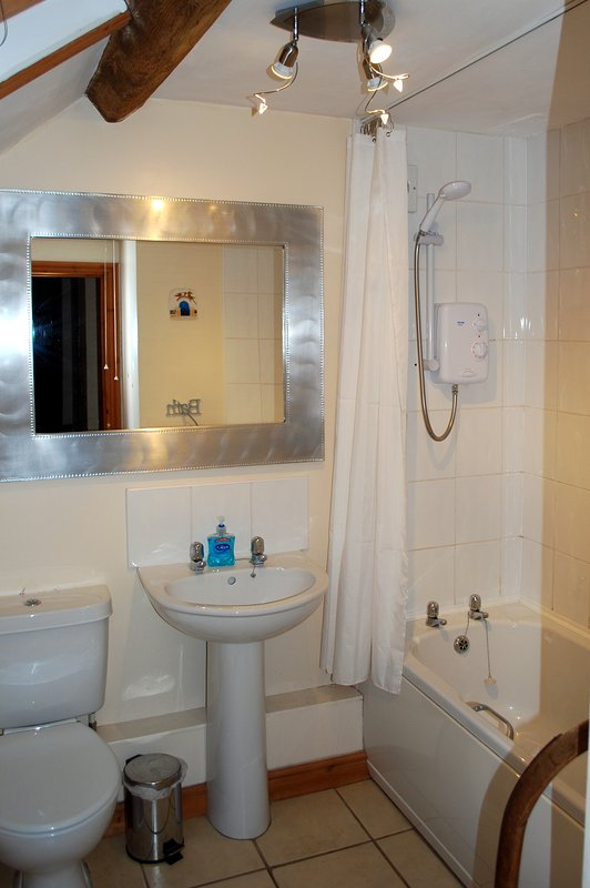Family Bathroom. Second toilet in downstairs cloakroom