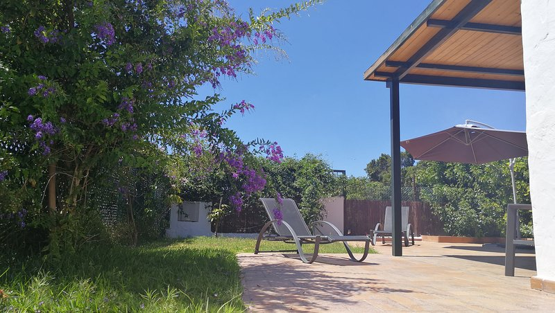 Sunny garden south faced
