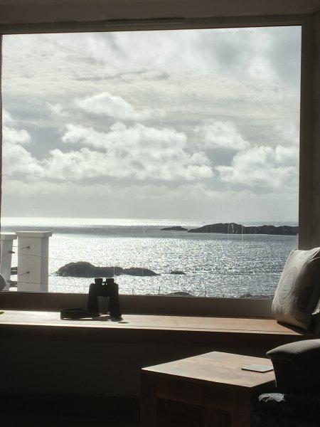 asiento de la ventana de imagen en el salón