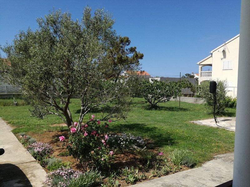 House Begonija, vacation rental in Privlaka