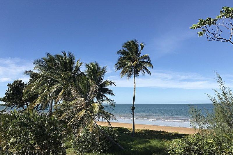 Luna Mission - Wongaling Beach