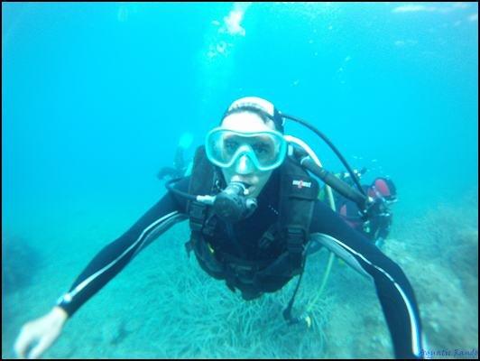 many dive spot