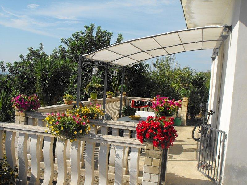 maison terrasse Alba