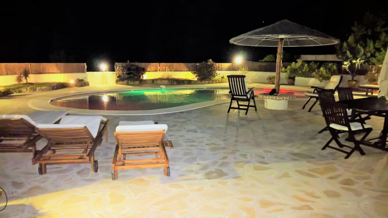 TERRACE AT NIGHT: multicolored lights in the pool and on the plant