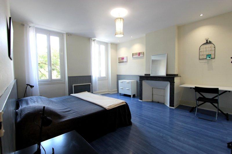 Spacieux Duplex en centre ville d'Albi, holiday rental in Tarn