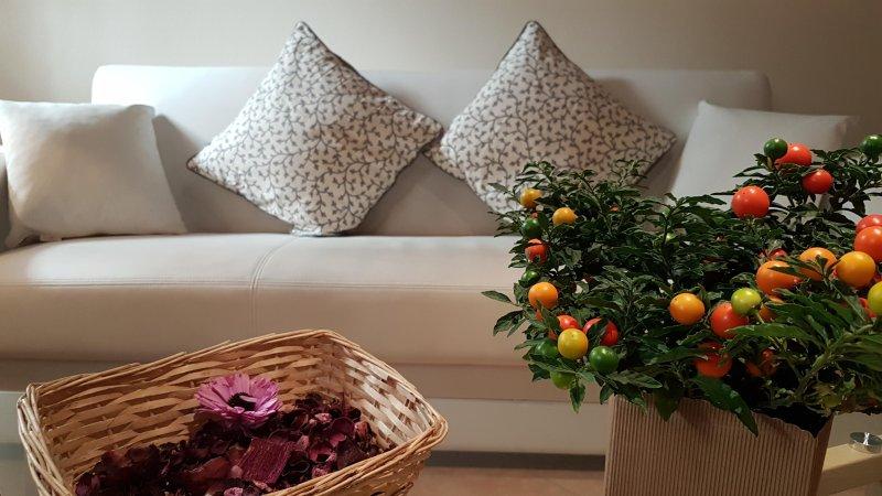 Veronetta Lovely apartment, vacation rental in San Pancrazio