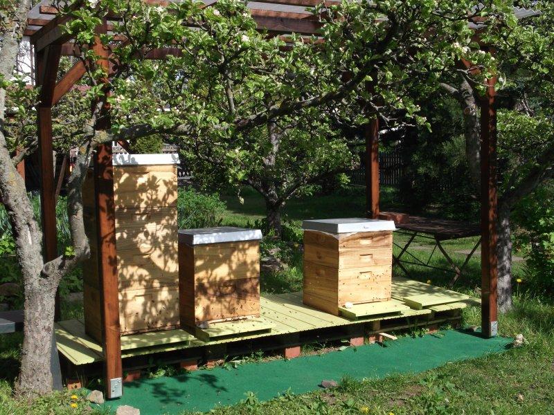 notre rucher